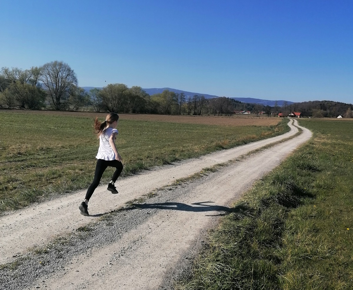 Korona šport ali pogled v domače telovadnice